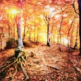 Les travaux dans le style de la peinture d'aquarelle Forest Road en Th Photographie stock