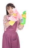 Les travaux domestiques Images libres de droits