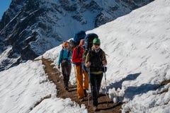 Les Trekkers sont en vallée de Khumbu sur un chemin au camp de base d'Everest Photos libres de droits