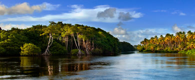 Les Trinité-et-Tabago - le Mayaro photos libres de droits