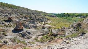 Les tronçons pétrifiés des arbres de la Chypre font saillie vers le haut de leur long enterrement Image libre de droits