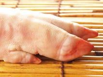Les trotteurs du porc cru Photo libre de droits