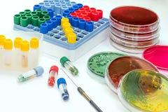 Les tubes de Microbank pour maintiennent l'agent pathogène d'isolement dans le congélateur Image stock