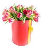 Les tulipes colorées dans un chapeau rond enferment dans une boîte, d'isolement sur le fond blanc Photographie stock libre de droits