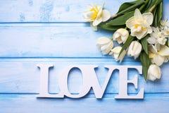 Les tulipes de ressort et les fleurs et le mot blancs de narcisse aiment sur le bleu Images stock