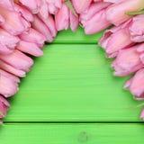Les tulipes fleurit au printemps ou jour de mères avec le copyspace Photographie stock libre de droits