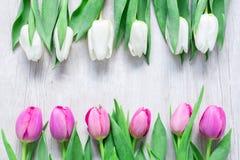 Les tulipes fleurit dans une rangée sur la table en bois pour le 8 mars, Internatio Image libre de droits