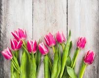 Les tulipes fraîches roses fleurit sur le fond en bois gris Image stock