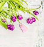 Les tulipes frontière florale, ressort fleurit le groupe avec des étiquettes sur le fond chic minable clair Photographie stock libre de droits