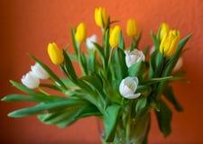 Les tulipes jaunes et blanches jaillissent fleurit le bouquet de Pâques des fleurs photo libre de droits