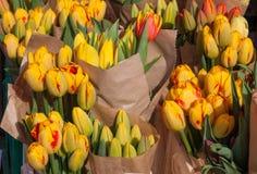 Les tulipes jaunes sur l'affichage aux agriculteurs lancent sur le marché en mars Photographie stock