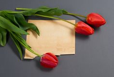 Les tulipes naturelles fleurit sur le fond gris-foncé, la vieille feuille de papier pour le texte - amour et le concept de vacanc Images libres de droits