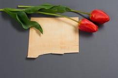 Les tulipes naturelles fleurit sur le fond gris-foncé, la vieille feuille de papier pour le texte - amour et le concept de vacanc Photographie stock