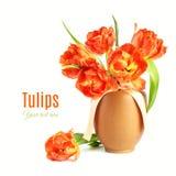 Les tulipes oranges dans le vase à argile solated sur le fond blanc Photographie stock