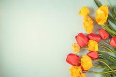 Les tulipes rouges et jaunes sur un appartement bleu de fond étendent Copyspace Image stock