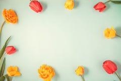 Les tulipes rouges et jaunes sur un appartement bleu de fond étendent Copyspace Photos libres de droits