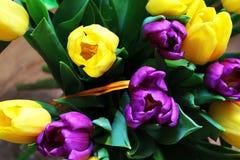 Les tulipes se ferment vers le haut photos libres de droits