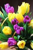 Les tulipes se ferment vers le haut images libres de droits