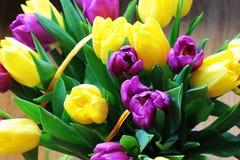 Les tulipes se ferment vers le haut image stock