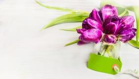 Les tulipes se rassemblent dans le pot en verre avec de l'eau et l'Empty tag sur le fond clair, bannière Juste plu en fonction Image stock