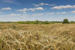 Les turbines de vent dans le paysage de Suwalki se garent, la Pologne photos stock