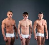 Les types musculaires sexy fait de la publicité des dossiers dans le studio Photos stock