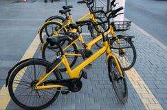 Les vélos jaunes pour la location sur le stationnement images libres de droits