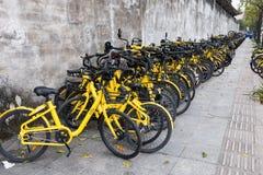 Les vélos partagés ont mis de côté la route Image stock