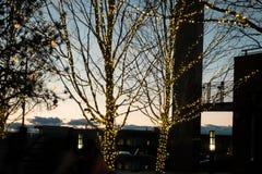 Les vacances s'allument dans Lakewood du centre le Colorado au crépuscule Photo stock