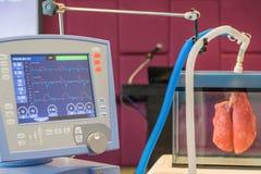 Les vagues de l'électrocardiogramme de tension artérielle dans le moniteur pour la pièce d'ICU Images libres de droits