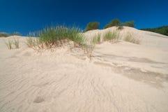 Les vagues de sable sur une dune chez Curonian crachent Photographie stock