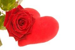 Les Valentines se sont levés Photographie stock