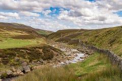 Les vallées de Yorkshire aménagent en parc près du pont de reddition, North Yorkshire Photos libres de droits