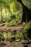 Les vallons inférieurs, parc d'état de Matthiessen Photographie stock libre de droits