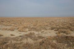Les vastes étendues des steppes et des semi-déserts secs kazakhs image libre de droits