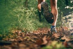 Les veaux musculaires d'une formation masculine de taqueur d'ajustement pour la forêt de pays croisé traînent la course en parc n Photos libres de droits