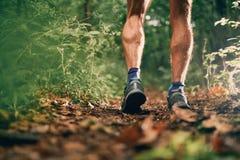 Les veaux musculaires d'une formation masculine de taqueur d'ajustement pour la forêt de pays croisé traînent la course en parc n Photographie stock libre de droits