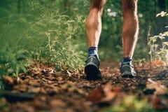 Les veaux musculaires d'une formation masculine de taqueur d'ajustement pour la forêt de pays croisé traînent la course en parc n Photographie stock