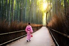 Les vergers en bambou Image libre de droits