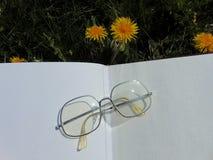 Les verres s'étendant sur le livre ouvert avec le jardin fleurit à l'arrière-plan photo stock