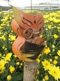 Les verres sages d'usage de hibou se concentrent sur la lecture dans la plantation jaune large de fleur de chrysanthème Images libres de droits