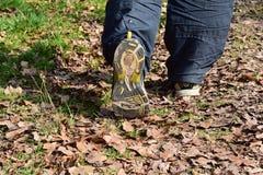Les vieilles chaussures de sport, vieilles chaussures pulsantes, vieilles espadrilles, utilisées folâtrent des chaussures, vieill Photographie stock libre de droits