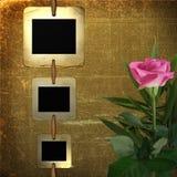 Les vieilles glissières pour la photo avec le rose ont monté illustration libre de droits