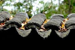 Les vieilles gouttières de maison du Chinois et des feuilles photo stock