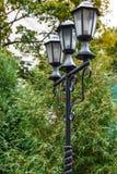 Les vieilles lumières sont en parc, Photos stock