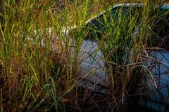 Les vieilles voitures d'Abandone se sont transformées en épaves Images libres de droits
