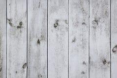Les vieux conseils légers La texture en bois Le fond Photo libre de droits