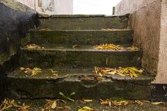 Les vieux escaliers Image libre de droits