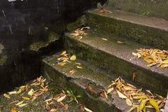 Les vieux escaliers Photo stock