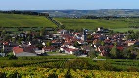 Les vignobles de Champagne dans le DES de Cote barrent le secteur du département de l'Aube près à Baroville, Champagne-Ardennes clips vidéos